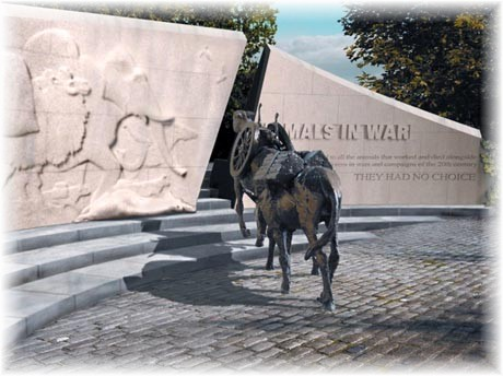 Image result for remembrance day animals who served