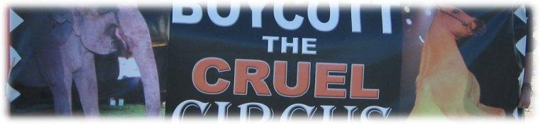 Boycott the Cruel Circus
