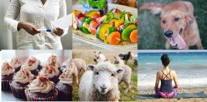 Cleethorpes Vegan Festival 2019