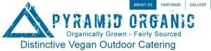 Pyramid Organic Logo