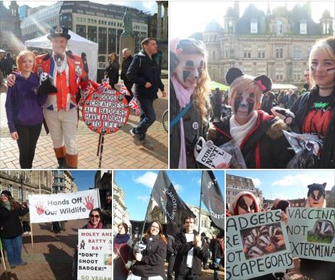 badger march pictures