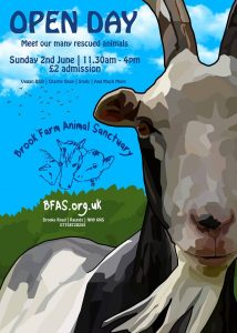 Brook Farm Sanctuary Open Day Poster