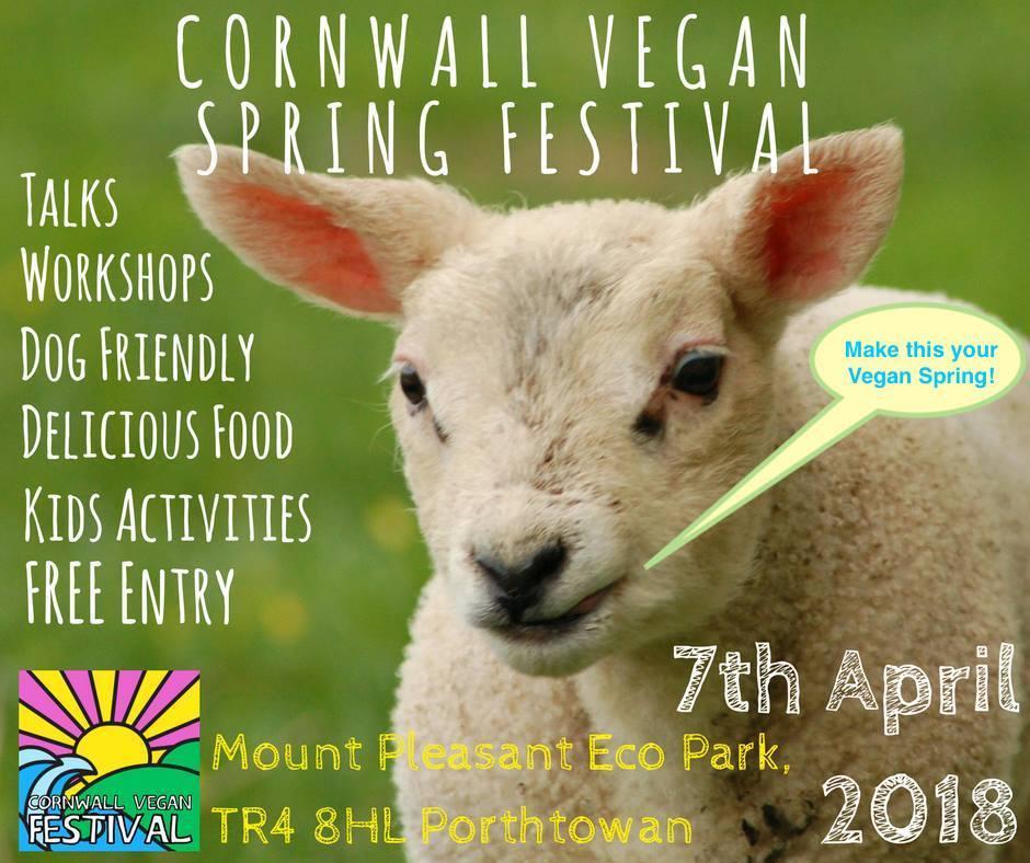 cornwall vegan festival