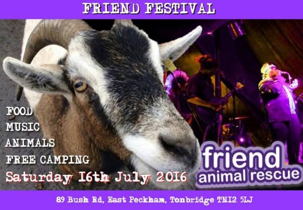 poster image for friend festival 2016