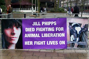 Jill Phipps Banner
