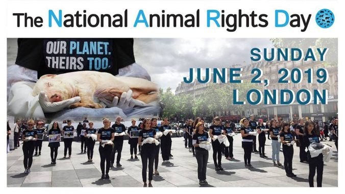 national animal rights day banner