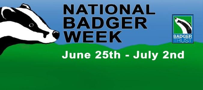 national badger week logo