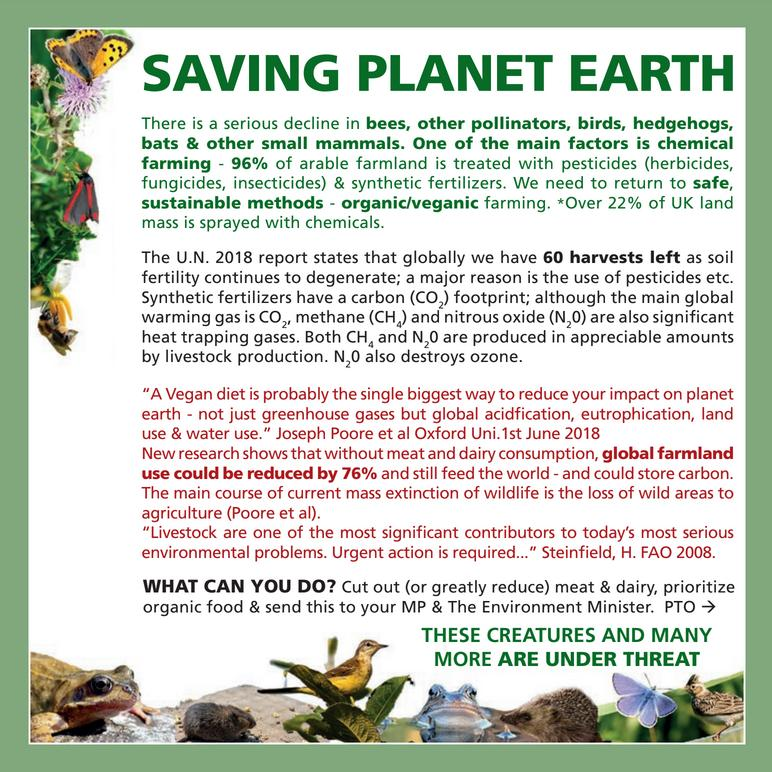Save the Earth card side 1