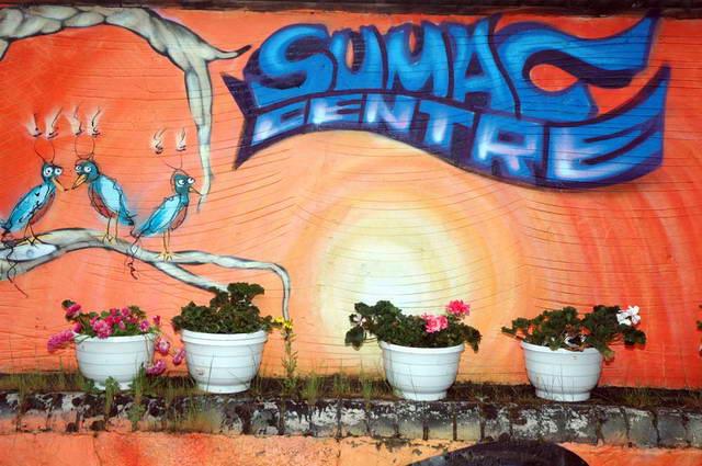 Sumac Garden picture