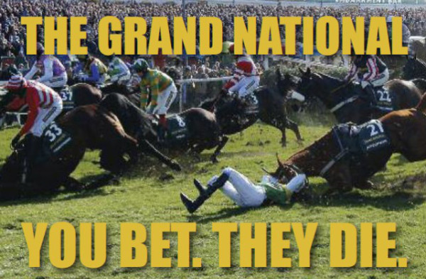You Bet The Die Grand National Protest