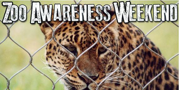 zoo awareness Weekend image